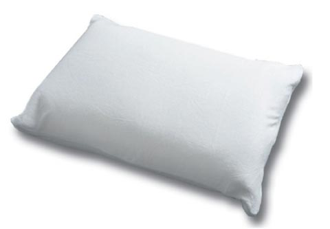 Pillow Christmas Gift Guide Part One: $50 & Under